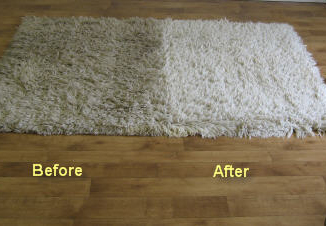 Area Rug Cleaning Dry Master Systems