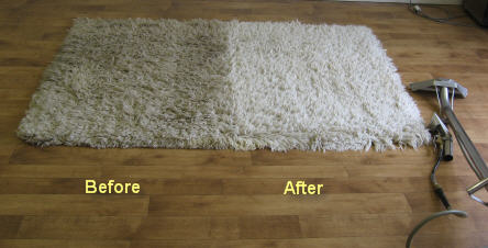 area-rug-cleaner